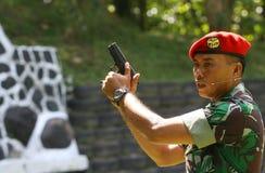 Ασκήσεις που χρησιμοποιούν τα πυροβόλα Στοκ Εικόνες