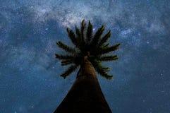 Αστέρια απεριόριστα Στοκ εικόνα με δικαίωμα ελεύθερης χρήσης