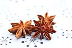 αστέρια γλυκάνισου Στοκ εικόνα με δικαίωμα ελεύθερης χρήσης