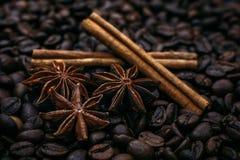 Αστέρια και κανέλα γλυκάνισου στα ψημένα φασόλια καφέ Στοκ εικόνα με δικαίωμα ελεύθερης χρήσης