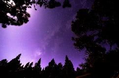 Αστέρια στον ουρανό τη νύχτα Στοκ εικόνα με δικαίωμα ελεύθερης χρήσης