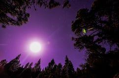 Αστέρια στον ουρανό τη νύχτα Στοκ φωτογραφία με δικαίωμα ελεύθερης χρήσης
