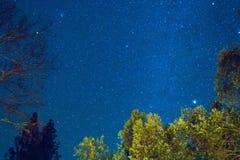 Αστέρια στο νυχτερινό ουρανό Στοκ Εικόνα