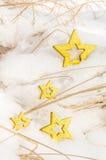 Αστέρια Χριστουγέννων στο χιόνι 1 στοκ εικόνα με δικαίωμα ελεύθερης χρήσης