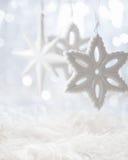 Αστέρια Χριστουγέννων Στοκ εικόνες με δικαίωμα ελεύθερης χρήσης
