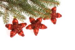αστέρια Χριστουγέννων Στοκ Φωτογραφία