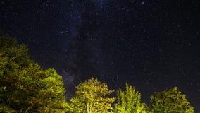 Αστέρια Plitvice απόθεμα βίντεο