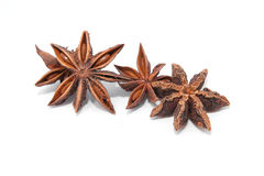 αστέρι γλυκάνισου Στοκ Εικόνες