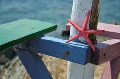 Αστέρι Ερυθρών Θαλασσών στις ζωηρόχρωμες σανίδες Στοκ φωτογραφία με δικαίωμα ελεύθερης χρήσης