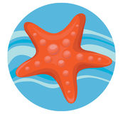 αστέρι θάλασσας Στοκ Εικόνα
