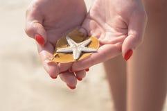 Αστέρι θάλασσας διαθέσιμο Στοκ Φωτογραφίες