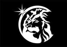 Αστέρι λιονταριών Απεικόνιση αποθεμάτων