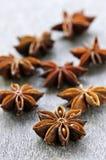 αστέρι σπόρων καρπού γλυκά&nu Στοκ εικόνες με δικαίωμα ελεύθερης χρήσης