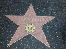 Αστέρι της Mae Murray στο hollywood Στοκ φωτογραφίες με δικαίωμα ελεύθερης χρήσης
