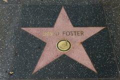 Αστέρι του Δαβίδ Foster στον περίπατο Hollywood της φήμης Στοκ φωτογραφία με δικαίωμα ελεύθερης χρήσης