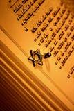 αστέρι του Δαβίδ torah Στοκ εικόνες με δικαίωμα ελεύθερης χρήσης
