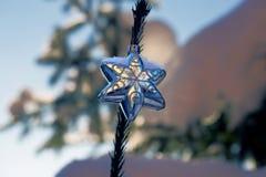 Αστέρι Χριστουγέννων στον κομψό κλάδο στοκ εικόνες