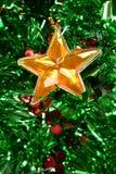 αστέρι Χριστουγέννων Στοκ εικόνες με δικαίωμα ελεύθερης χρήσης