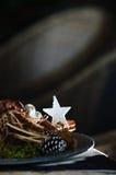 αστέρι Χριστουγέννων Στοκ φωτογραφία με δικαίωμα ελεύθερης χρήσης