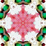 αστέρι Χριστουγέννων Στοκ εικόνα με δικαίωμα ελεύθερης χρήσης