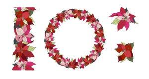 Αστέρι Χριστουγέννων Poinsettia, στεφάνι, άνευ ραφής βούρτσα και στοιχεία διανυσματική απεικόνιση
