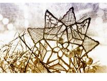 αστέρι δαντελλών Στοκ φωτογραφία με δικαίωμα ελεύθερης χρήσης
