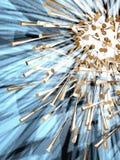 αστέρι 8 παράξενο ελεύθερη απεικόνιση δικαιώματος