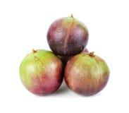 Αστέρι Apple, Chrysophyllum Cainito Στοκ εικόνες με δικαίωμα ελεύθερης χρήσης