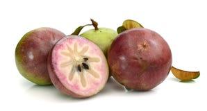 Αστέρι Apple, Chrysophyllum Cainito Στοκ Εικόνες