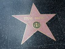 Αστέρι harvey του Steve στο hollywood Στοκ εικόνες με δικαίωμα ελεύθερης χρήσης