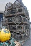 αστακός κλουβιών Στοκ εικόνα με δικαίωμα ελεύθερης χρήσης