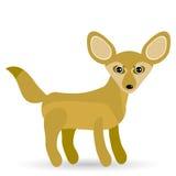 Αστεία αλεπού Fennec χαριτωμένη σε ένα άσπρο υπόβαθρο Στοκ Εικόνες