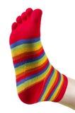 αστεία γυναικεία κάλτσα στοκ εικόνα