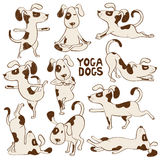 Αστεία εικονίδια σκυλιών που κάνουν τη θέση γιόγκας διανυσματική απεικόνιση