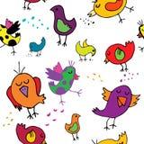 Αστεία ζωηρόχρωμα birdies απεικόνιση αποθεμάτων