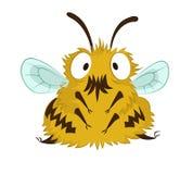 Αστεία μέλισσα Στοκ Εικόνα