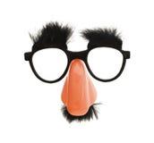 Αστεία μεταμφίεση γυαλιών μύτης στοκ εικόνες με δικαίωμα ελεύθερης χρήσης