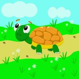 Αστεία πράσινη χελώνα στο λιβάδι - διανυσματική απεικόνιση, eps ελεύθερη απεικόνιση δικαιώματος