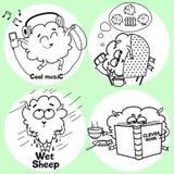 αστεία πρόβατα Στοκ Εικόνες