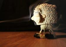 αστεία πρόβατα Στοκ φωτογραφία με δικαίωμα ελεύθερης χρήσης
