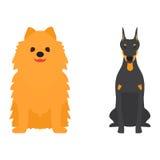 Αστεία φιλική λατρευτή κυνοειδής διανυσματική απεικόνιση κουταβιών κινούμενων σχεδίων ψωμιού χαρακτήρα σκυλιών κινούμενων σχεδίων απεικόνιση αποθεμάτων