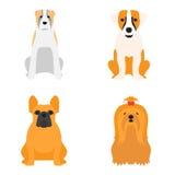 Αστεία φιλική λατρευτή κυνοειδής διανυσματική απεικόνιση κουταβιών κινούμενων σχεδίων ψωμιού χαρακτήρα σκυλιών κινούμενων σχεδίων ελεύθερη απεικόνιση δικαιώματος