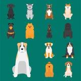 Αστεία φιλική λατρευτή κυνοειδής διανυσματική απεικόνιση κουταβιών κινούμενων σχεδίων ψωμιού χαρακτήρα σκυλιών κινούμενων σχεδίων διανυσματική απεικόνιση