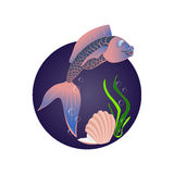 Αστεία ψάρια θάλασσας Στοκ Φωτογραφίες