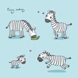 Αστεία zebras κινούμενων σχεδίων Στοκ φωτογραφία με δικαίωμα ελεύθερης χρήσης