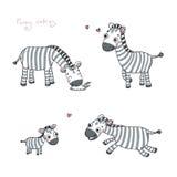 Αστεία zebras κινούμενων σχεδίων Στοκ Φωτογραφίες