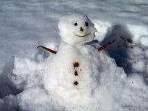 Αστείος λίγος χιονάνθρωπος icey Στοκ Εικόνες