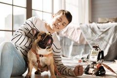Αστείος λίγο σκυλί που παρουσιάζει γλώσσα του Στοκ Φωτογραφία