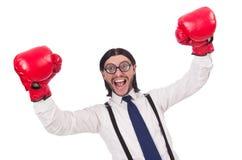 Αστείος νέος επιχειρηματίας με τα εγκιβωτίζοντας γάντια που απομονώνεται Στοκ φωτογραφίες με δικαίωμα ελεύθερης χρήσης