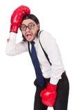 Αστείος νέος επιχειρηματίας με τα εγκιβωτίζοντας γάντια που απομονώνεται Στοκ εικόνες με δικαίωμα ελεύθερης χρήσης